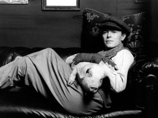images_articles_articles_David_Bowie_porc