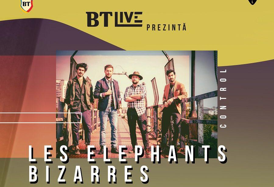 Afis Les Elephants Bizarres